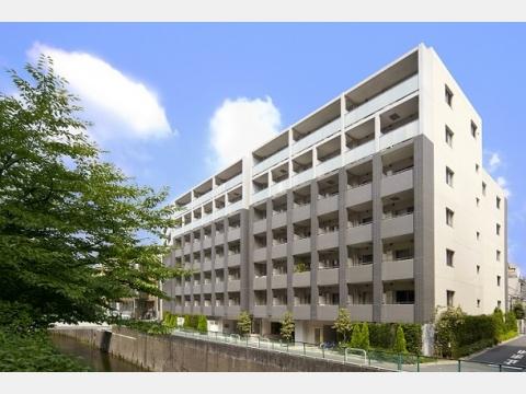 所在地 東京都新宿区中落合1-5-5交通 西武新宿線/下落合 徒歩5分総戸数 187戸/階建 7階建-
