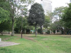緑豊かな亀塚公園