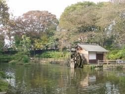 風情ある鍋島松濤公園
